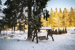 oscillation couverte de neige de jardin près d'un pin grand image stock