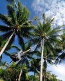 Oscillation d'enfant de Bajau Images libres de droits