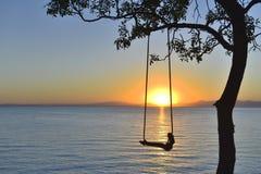 Oscillation dans l'arbre et le lever de soleil Photo stock