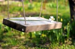 Oscillation de fleur de source Photos libres de droits