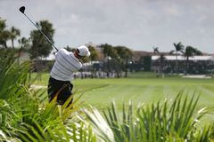 Oscillation de Gol à doral, Miami Image stock