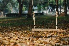 Oscillation en bois dans l'oscillation en bois vide de parc en parc photo libre de droits