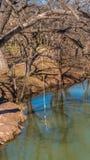 Oscillation jaune de corde sur un arbre s'élevant au-dessus de l'eau sur une rivière photo stock