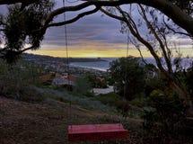 Oscillation reculée d'arbre avec des vues scéniques de l'océan pacifique Images libres de droits
