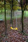 Oscillazione in bosco verde e frondoso Fotografie Stock Libere da Diritti
