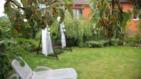Oscillazione decorata per una cerimonia di nozze nel cortile della casa Le nozze oscillano nella pioggia archivi video