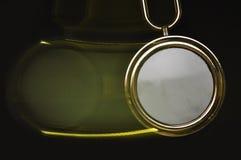 Oscillazione del pendolo Fotografie Stock Libere da Diritti