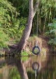 Oscillazione della corda del pneumatico sul fiume Fotografia Stock Libera da Diritti