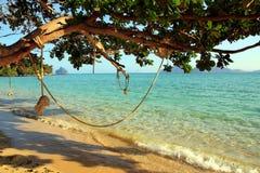 Oscillazione della corda sulla spiaggia Fotografia Stock