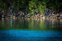 Oscillazione della gomma sopra il fiume Fotografia Stock