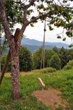 Oscillazione di legno Fotografie Stock Libere da Diritti