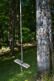 Oscillazione di legno vuota della corda accanto all'albero Fotografia Stock