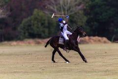 Oscillazione di Polo Ball Player Pony Focus Fotografie Stock