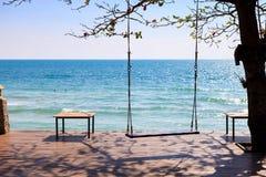 Oscillazione sotto l'albero vicino alla spiaggia fotografia stock