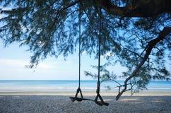Oscillazione sulla spiaggia Immagini Stock Libere da Diritti