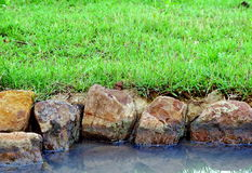 Oscilli il fiume e l'erba Immagini Stock Libere da Diritti