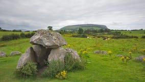 Oscilli il monumento sul campo verde con le mucche e la montagna in Irlanda fotografia stock libera da diritti