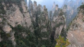 Oscilli le montagne al parco nazionale in Hunan, Cina di Zhangjiajie stock footage