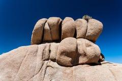 Roccia al parco nazionale dell'albero di Joshua Immagini Stock