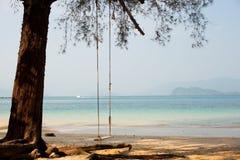 Oscilli sulla riva di una spiaggia tropicale Fotografia Stock Libera da Diritti