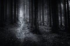 oscuridad Fotografía de archivo libre de regalías