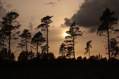 Oscuridad crepuscular de la tarde Foto de archivo