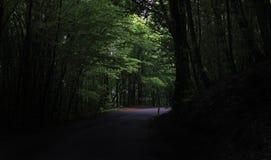 Oscuridad de mi alma Foto de archivo