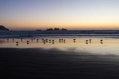 Oscuridad en la costa del océano Fotografía de archivo libre de regalías
