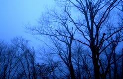Oscuridad en las montañas Fotografía de archivo libre de regalías