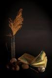 Oscuridad mística con el libro Imágenes de archivo libres de regalías