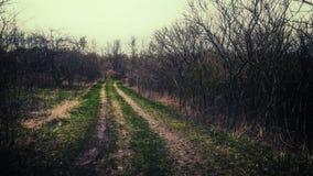 Oscuridad rural del camino Foto de archivo
