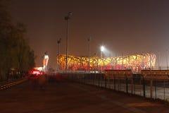 Oscurità dello stadio di Birdnet fotografie stock