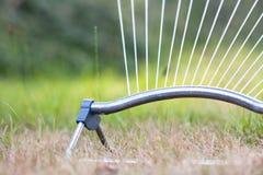 Oscylować kropidło iryguje suchego gazon na gorącym letnim dniu zdjęcie royalty free