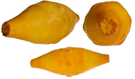 Oscypek - καπνισμένο τυρί Στοκ εικόνα με δικαίωμα ελεύθερης χρήσης