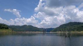 Osedda Thailand Arkivfoto