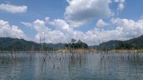 Osedda Thailand Royaltyfria Foton