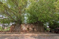 Osedda Thailand, Buddha i gammal tempel på Wat Sang Kratai Ang Thong Province, Thailand Arkivfoto
