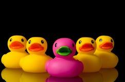 Osez être différent - les canards en caoutchouc sur le noir Image stock