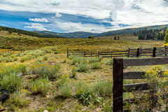 Osha góry dolina Fotografia Royalty Free