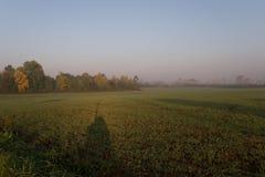 Oshawa 01 di alba della natura immagini stock