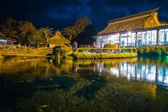 Oshino Hakkai by på natten i Japan fotografering för bildbyråer