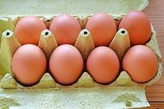 Osiem jajek Zdjęcia Royalty Free