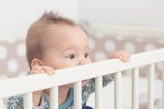 Osiem miesięcy starej dziewczynki Fotografia Royalty Free
