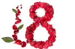 osiem płatków róży kształt obrazy royalty free