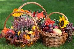 Osiers d'automne image libre de droits
