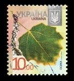 Osika leaf. KAZAKHSTAN, ALMATY - OCTOBER, 2018: a post stamp printed in UKRAINE shows Osika leaf, circa 2012 stock image