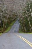 Osikowy wiejska droga upad Obraz Royalty Free