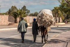 Osioł - typowi sposoby transport w Maroko Fotografia Royalty Free