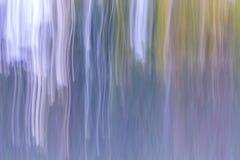Oskarp abstraktion av den naturliga skogen Arkivbilder