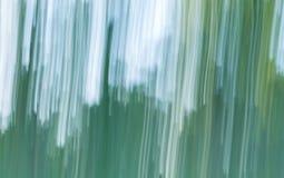 Oskarp abstraktion av den naturliga skogen Fotografering för Bildbyråer